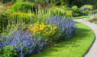 Bahçe Bitkileri Taban Puanları