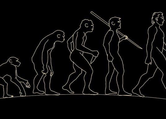 Antropoloji Nedir? Neyi İnceler? Tarihçesi ve Öncü Bilim İnsanları