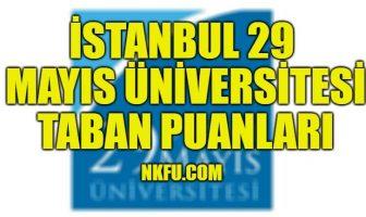 İstanbul 29 Mayıs Üniversitesi