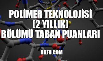 Polimer Teknolojisi (2 Yıllık) Taban Puanları