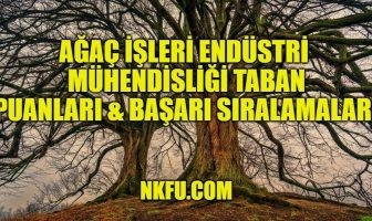 Ağaç İşleri Endüstri Mühendisliği
