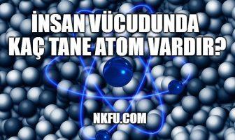 İnsan Vücudunda Kaç Tane Atom Vardır?