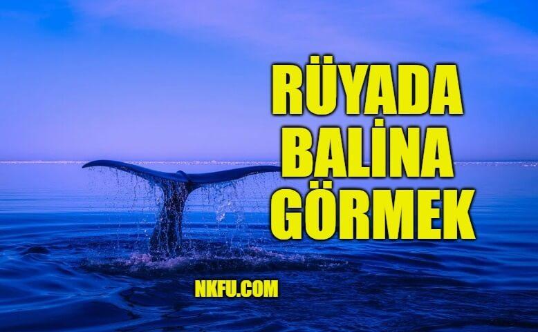 Rüyada Balina Görmek
