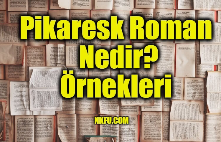 Pikaresk Roman