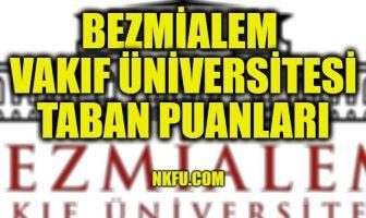 Bezm-i Alem Vakıf Üniversitesi