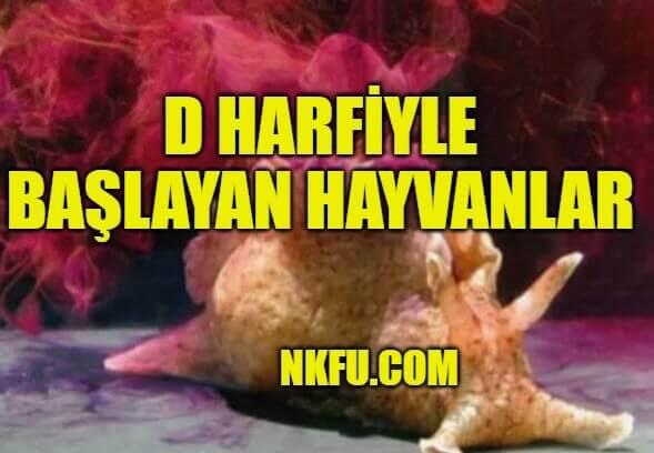 D Harfiyle Başlayan Hayvanlar