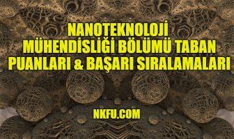 Nanoteknoloji Mühendisliği