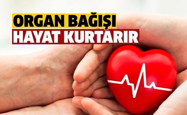 Organ Bağışı Sloganları