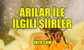 Arılar İle İlgili Şiirler