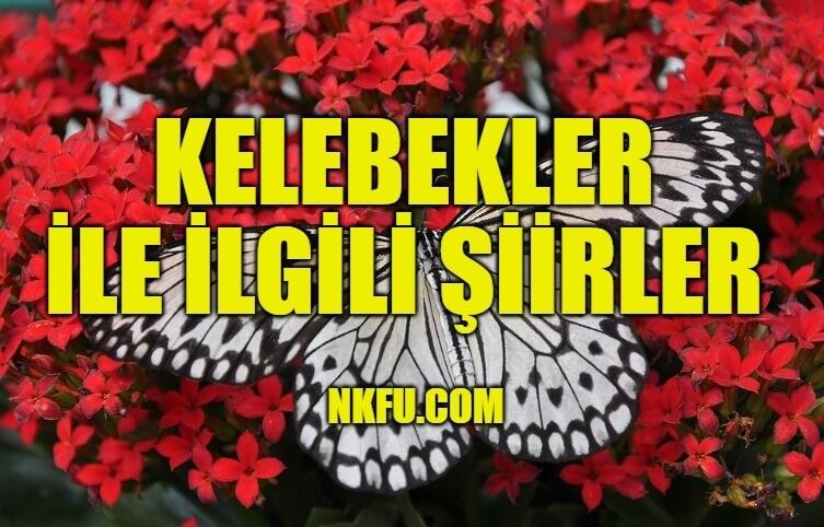Kelebekler İle İlgili Şiirler