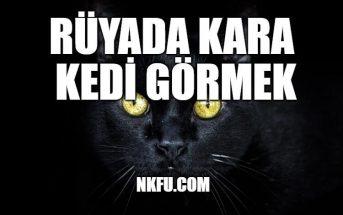 Rüyada Kara Kedi Görmek