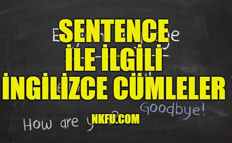 Sentence İle İlgili İngilizce Cümleler
