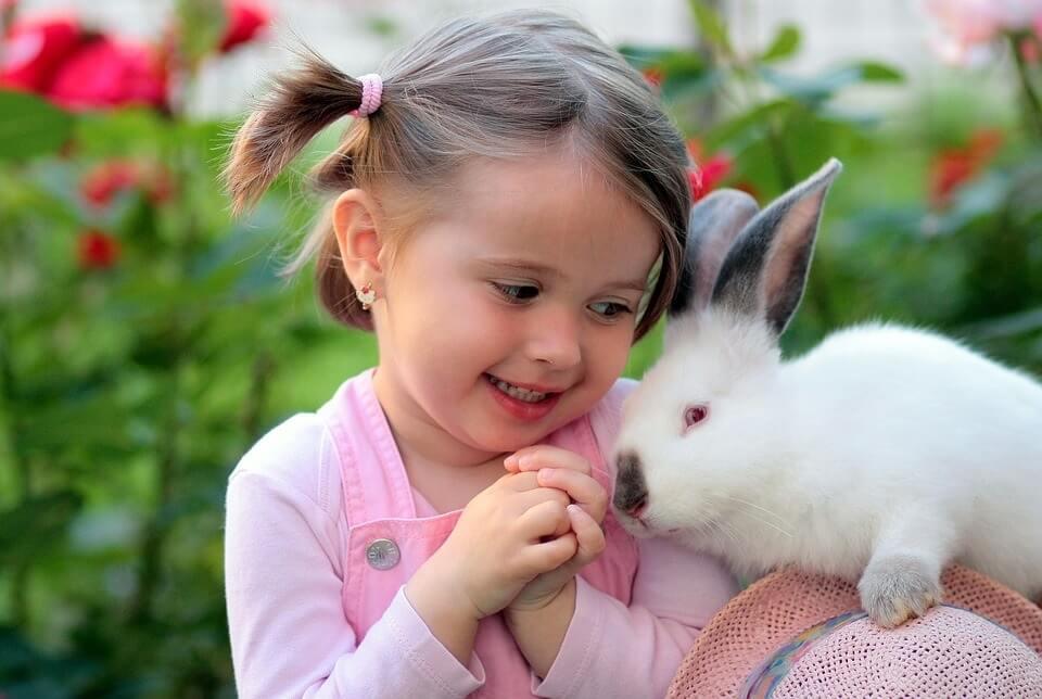 tavşan çocuk