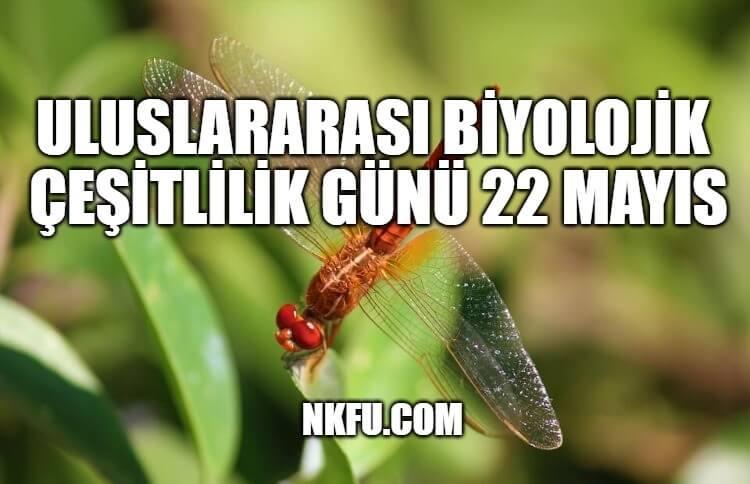 Uluslararası Biyolojik Çeşitlilik Günü