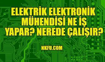 Elektrik Elektronik Mühendisi