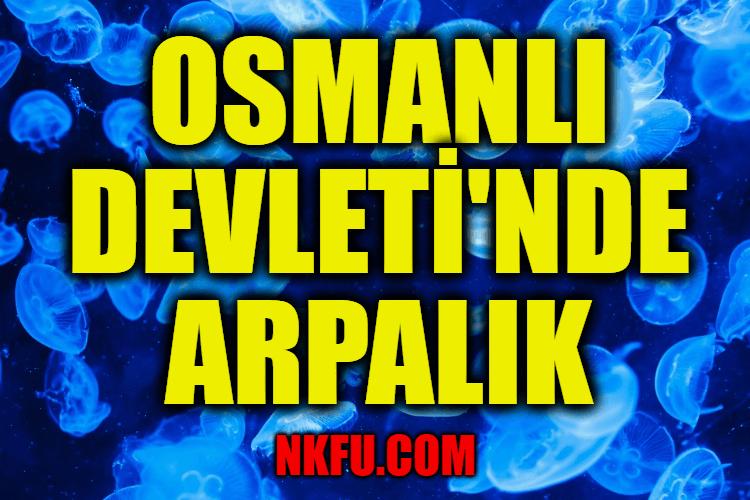 Osmanlı Devleti'nde Arpalık İle İlgili Bilgi
