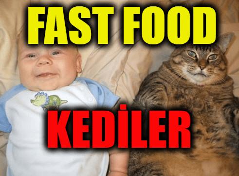 Fast Food Kedileri