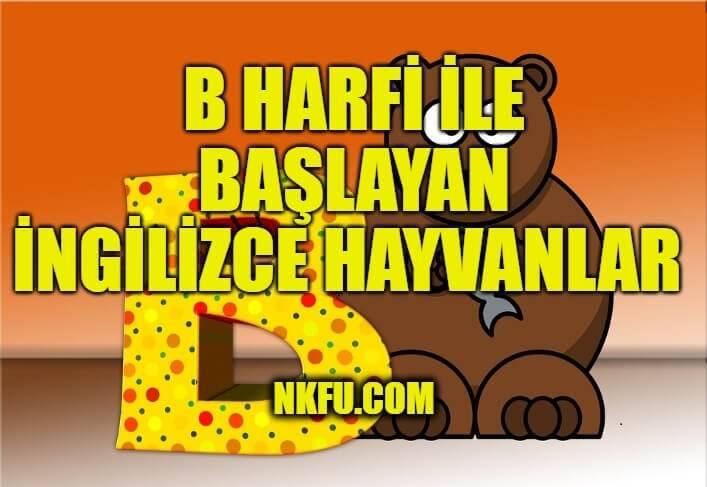 B Harfiyle Başlayan İngilizce Hayvanlar
