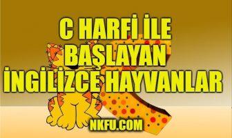 C Harfi ile başlayan ingilizce hayvanlar