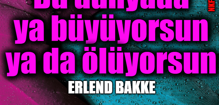 Erlend Bakke Sözleri: Ünlü Girişimciden İlham Motivasyon Veren Sözler