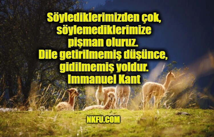 Immanuel Kant Sözleri
