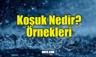 Koşuk Örnekleri - Hem Orijinal Dilinde Hem de Günümüz Türkçesi İle...