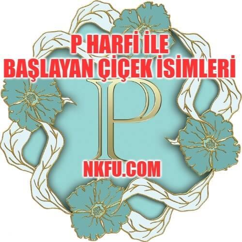 P Harfiyle Başlayan Çiçekler