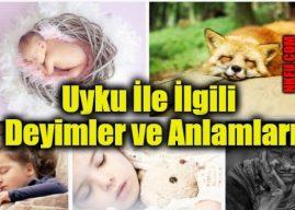 Uyku Uyumak İle İlgili Deyimler ve Anlamları Açıklamaları – Uyku Geçen