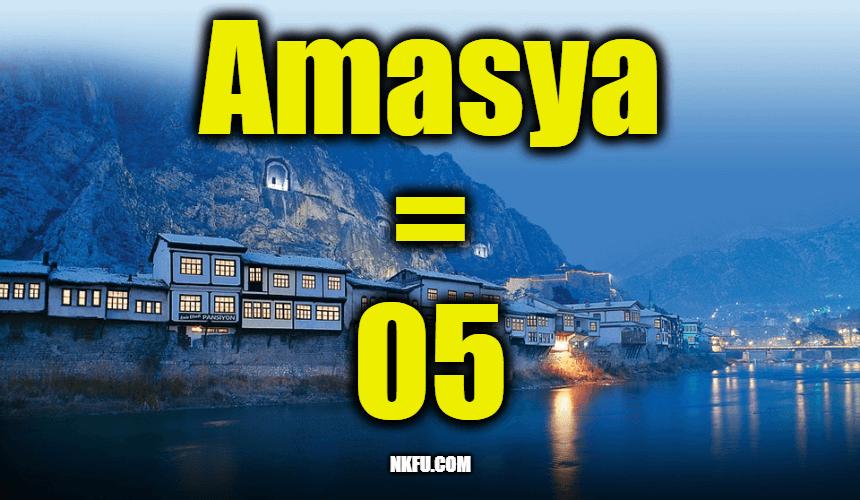 05 plaka amasya