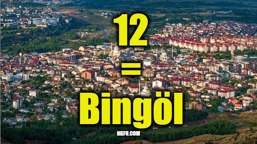 12 Plaka Bingöl