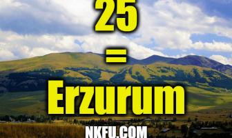 25 plaka erzurum