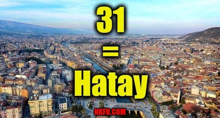 31 plaka hatay