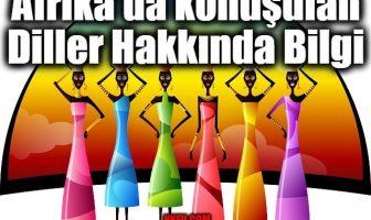 Afrika'da konuşulan Diller Hakkında Bilgi