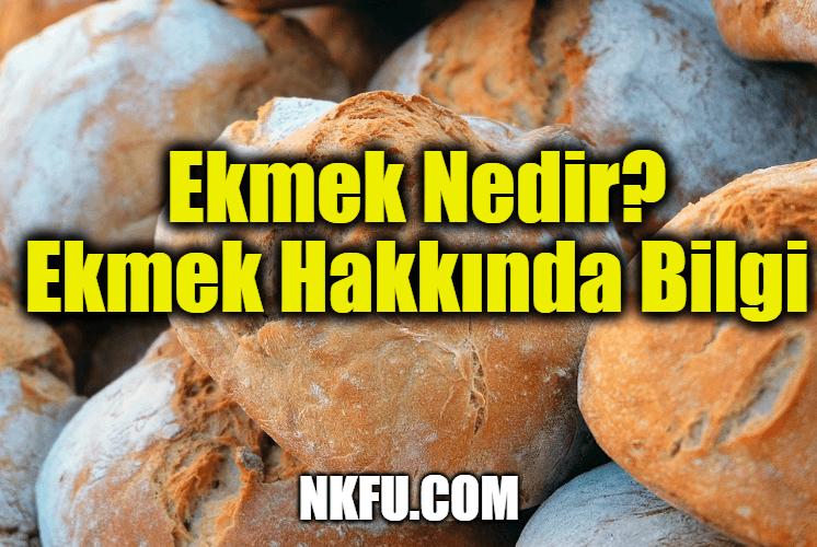 Ekmek Nedir? Ekmek Hakkında Bilgi
