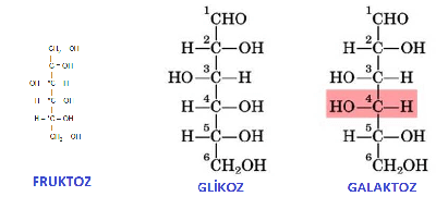 fruktoz-glikoz-galaktoz