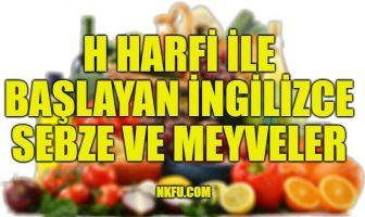 H Harfiyle Başlayan İngilizce Meyveler ve Sebzeler
