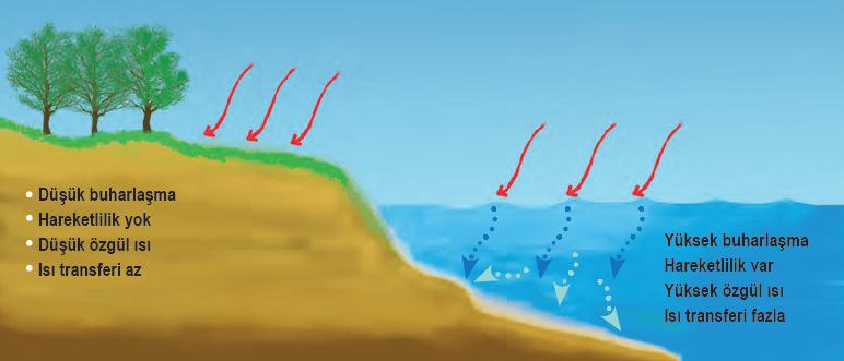 Kara ve denizlerin ısı özellikleri