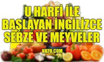 U Harfiyle Başlayan İngilizce Meyveler ve Sebzeler