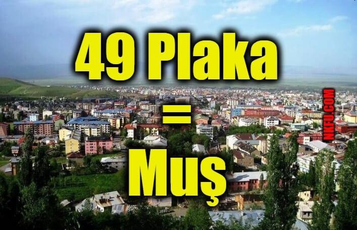 49 Plaka Muş