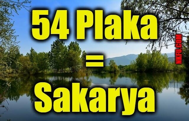 54 plaka sakarya