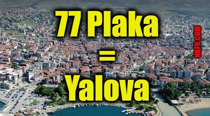 77 Plaka Yalova
