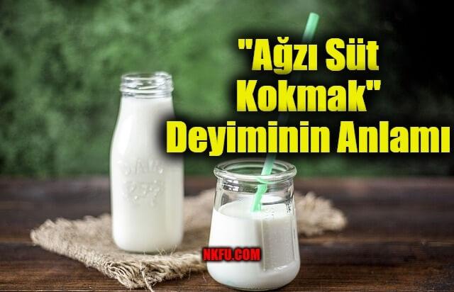 Ağzı Süt Kokmak Deyimi Anlamı – İle İlgili Cümleler