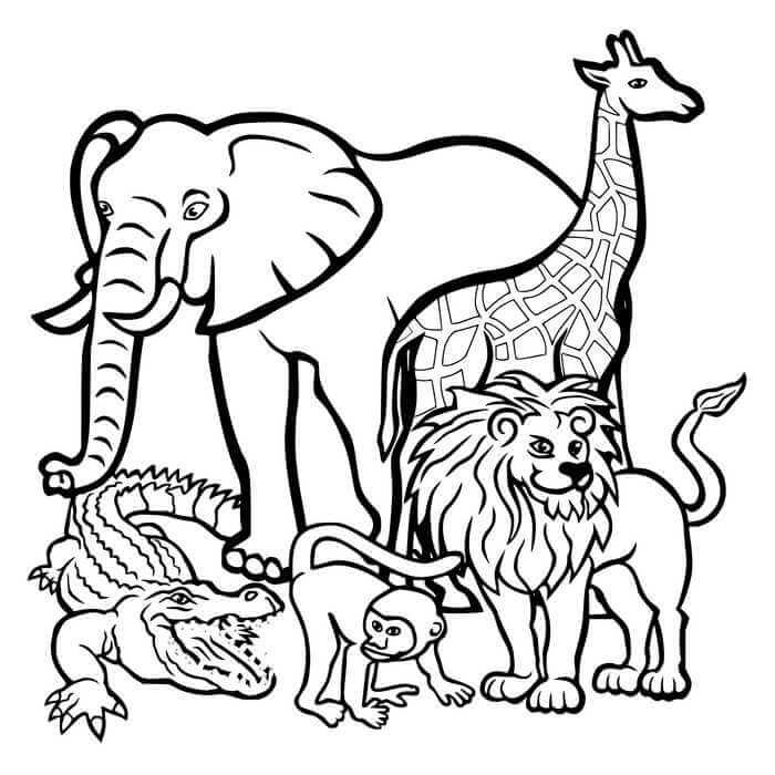 Afrika Vahşi Doğasına uygun boyama sayfaları