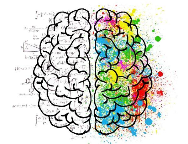 Matematik Sağlığınız İçin Yararlıdır – İşte Matematiğin Sağlığa Faydaları