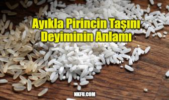 Ayıkla Pirincin Taşını Deyiminin Anlamı, Açıklaması – İle İlgili Cümleler
