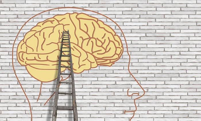 beyin psikoloji