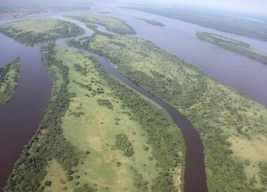 Kongo Nehri Nerededir? Kongo Nehri Özellikleri Hakkında Ansiklopedik Bilgi