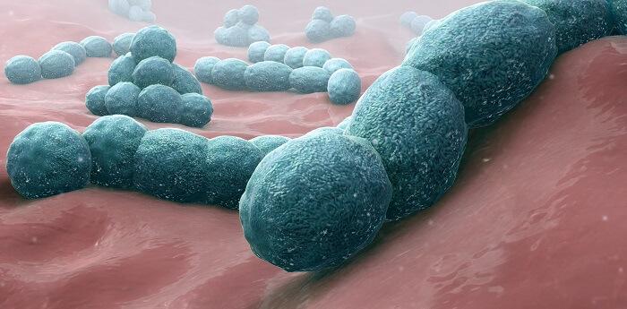 bakteriyal pnömani