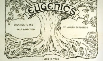 Öjenik Nedir? Kökenleri Eski Çağda Olan Garip Bir Kuram ve Felsefe