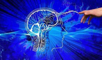 beyin bilgi felsefe
